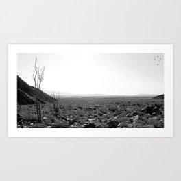 Anza-Borrego Art Print