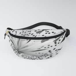 closer Fanny Pack