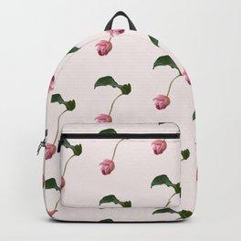 Medinilla Magnifica Sevens Backpack