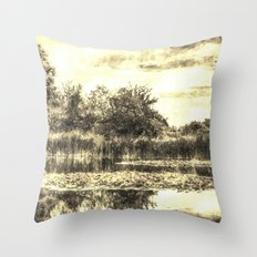 Liliy Pond Vintage Throw Pillow