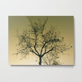Natural shapes #2 Metal Print