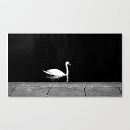 King of the Lake Canvas Print