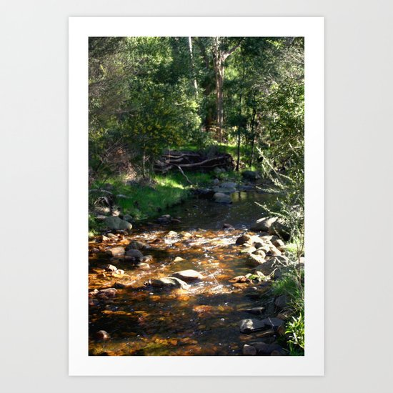 Stoney Creek Art Print