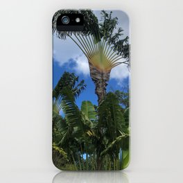 Traveler's Tree from Guadeloupe iPhone Case