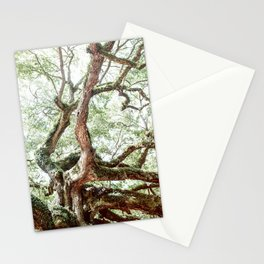 Angel Oak Tree Stationery Cards