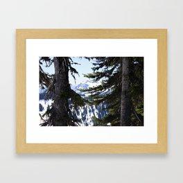 on Mount Rainier Framed Art Print