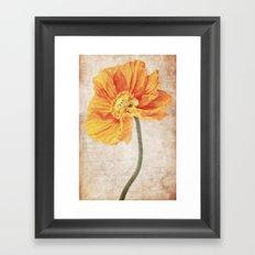 Bella orange Framed Art Print
