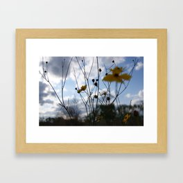 Flowers In The Clouds Framed Art Print