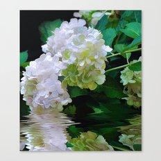 Summer Snowballs Canvas Print