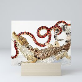Spectacled Caiman and a False Coral Snake by Maria Sibylla Merian c.1705-10 // Wild Animals Decor Mini Art Print