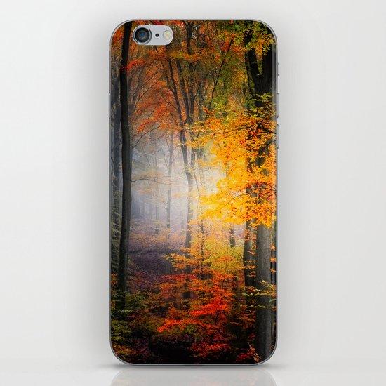 Light Colors iPhone & iPod Skin