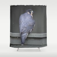 millenium falcon Shower Curtains featuring Falcon by Sarah Shanely Photography