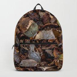 Fallen autumnal leaves Backpack