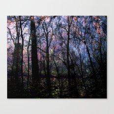 Through (variation) Canvas Print