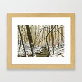Lake Hartwell, Jan 2016 Snow Framed Art Print