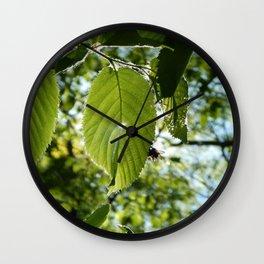 Sunlight Canopy II Wall Clock