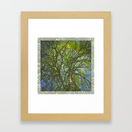 JACK'S MAPLE Framed Art Print