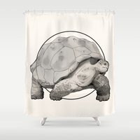 tortoise Shower Curtains featuring Tortoise by Twentyfive