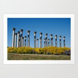 Capitol Columns, National Arboretum, Washington DC Art Print