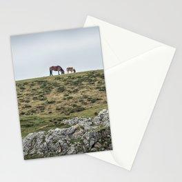 Asturcon, Asturian pony Stationery Cards