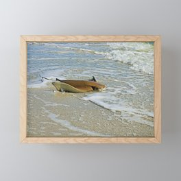 Stingray on Boca Grande I Framed Mini Art Print