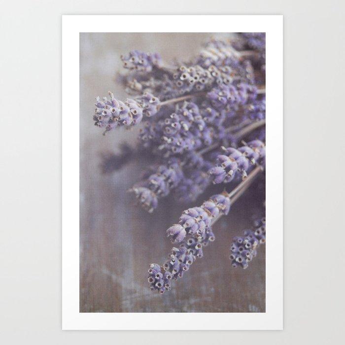 lavande Art Print