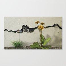 Between the Cracks Canvas Print