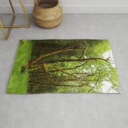 A Moos Laden Tree Rug