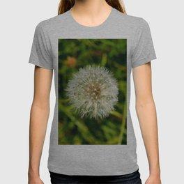 Dandelion Head T-shirt