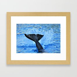 Whale of a Tail by Reay of Light Photography Framed Art Print