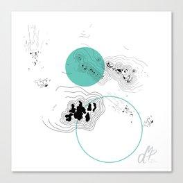 Absorption II Canvas Print