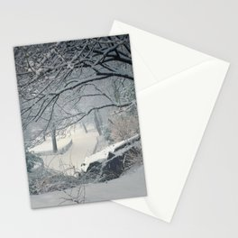 Central Park Snow Storm Stationery Cards