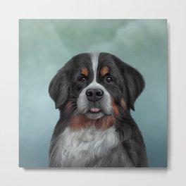 Drawing Bernese Mountain Dog 6 Metal Print
