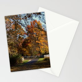Romantic Fool Stationery Cards
