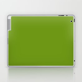 Stairway to Serenity ~ Moss Green Laptop & iPad Skin