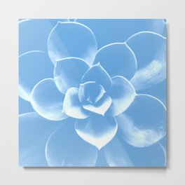 Succulent Plant Pastel Blue Color #decor #society6 #buyart Metal Print