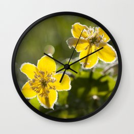 Frozen buttercup in love Wall Clock