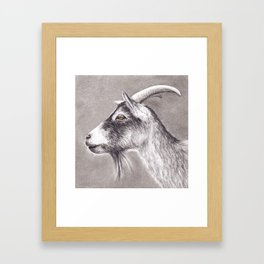 Little goat Framed Art Print