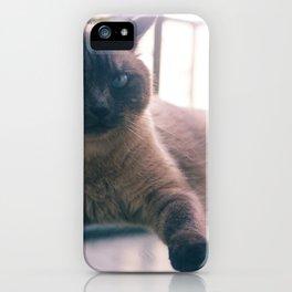 Bibi_Cat iPhone Case
