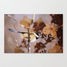 Birds :: Winter Chickadee Canvas Print