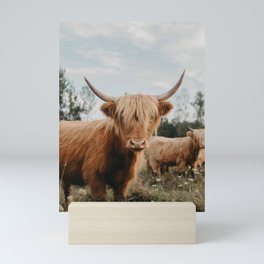 Highland Cow In The Country Mini Art Print