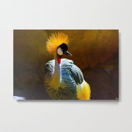 Bright Feathers Metal Print