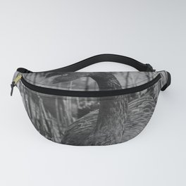 Black Swan 46 bw Donegal Ireland Fanny Pack