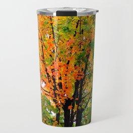 Leaves Changing Colors Travel Mug