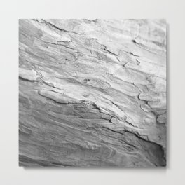 Unique Bark Texture Black and White Metal Print