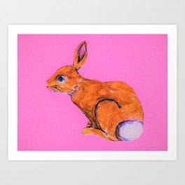 Rabbit on Pink Art Print