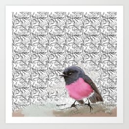 Pink Robin Art Print
