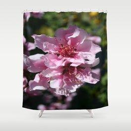 Peach Tree Blossom With Garden Background Shower Curtain