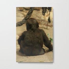 Babay gorilla Metal Print