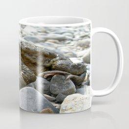 Bufo Bufo Toad Lounging On Stones Coffee Mug